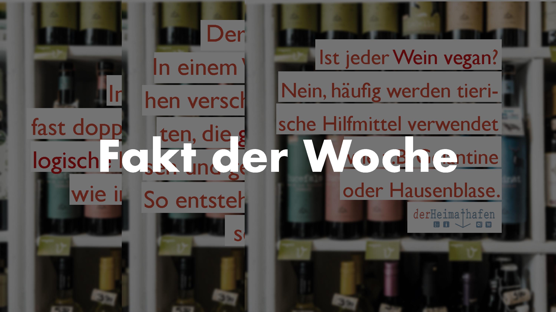 fakt-der-woche-derheimathafen-kiel, Weinladen Kiel